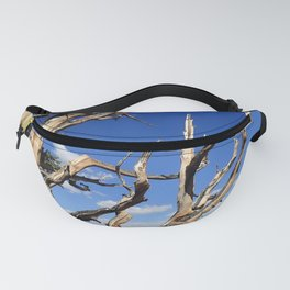 Trees of ancient times Fanny Pack