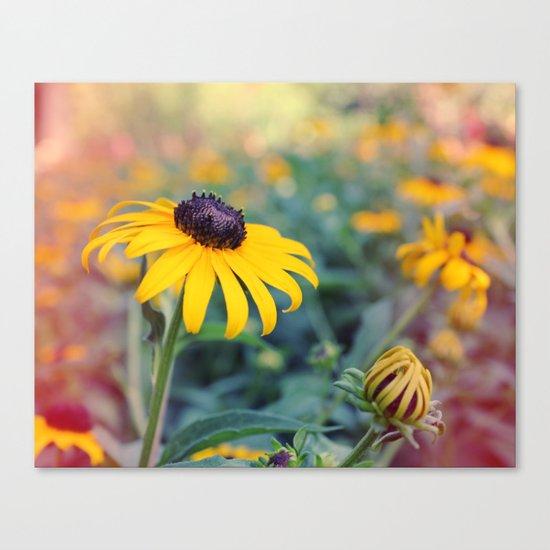 Flower series 04 Canvas Print