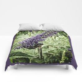 Honey Bee on Purple Flower, Powell Gardens, Missouri Comforters
