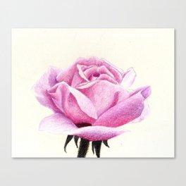 ROSE II Canvas Print