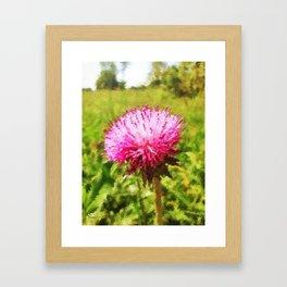 Thistles (Cirsium) Framed Art Print