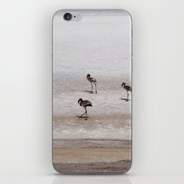 The wanderers iPhone Skin