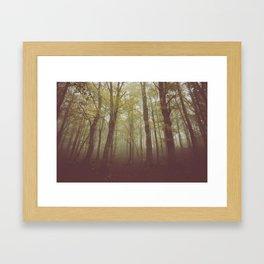 Wood in winter with fog Framed Art Print