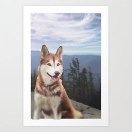 Dog on the Mountains of New Hampshire Art Print