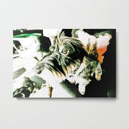 DACKEL DOG #12 Metal Print