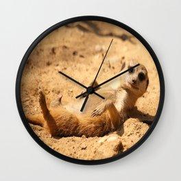 Meerkat Suricat suricatta Sunbathing #decor #society6 Wall Clock