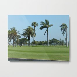 Golf Anyone ? Metal Print