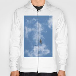 Red Tailed Hawk Hoody