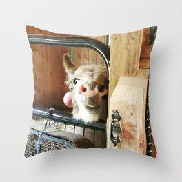Donkey Life Throw Pillow
