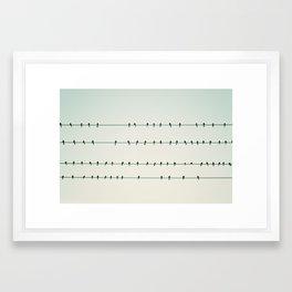 Birds on Four Wires  Framed Art Print