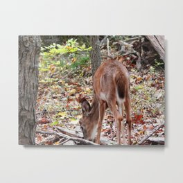 The young one Metal Print