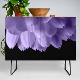 Ultra violet purple flower petals black Credenza