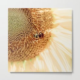 A Sunflower and A Bee Metal Print