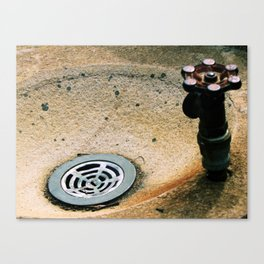 Drink of Water Canvas Print