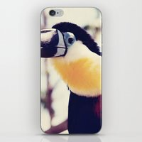 toucan iPhone & iPod Skins featuring Toucan by Erin Johnson