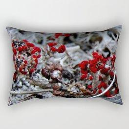 Devil's Matchstick Lichen Rectangular Pillow