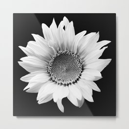 Sunflower In Black And White #decor #society6 #buyart Metal Print