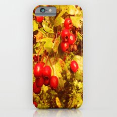 The Coming of Winter. Slim Case iPhone 6s