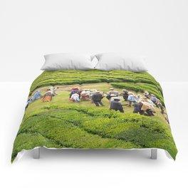 Tea gardens Comforters