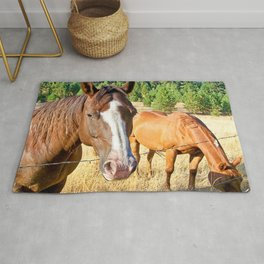 Country Livin' Rug