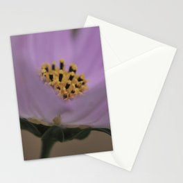 Cosmos Pink (1) Stationery Cards