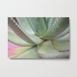 Spiked Plant Metal Print