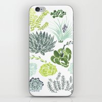 succulents iPhone & iPod Skins featuring Succulents  by Rae Ritchie