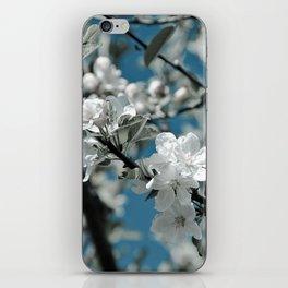 Almond Blossom iPhone Skin