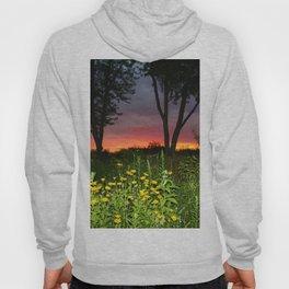Sunset Over a Wildflower Field Hoody