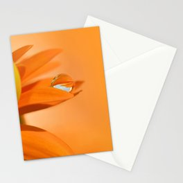 Drops 124 Stationery Cards
