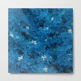 Blue fluorescent indigo flowers Metal Print