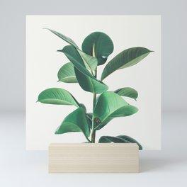 Rubber Fig Mini Art Print