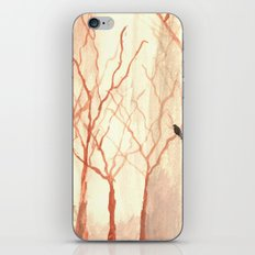 A Chance for Hope iPhone Skin