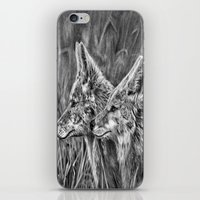 coyote iPhone & iPod Skins featuring Coyote by Patrick Entenmann