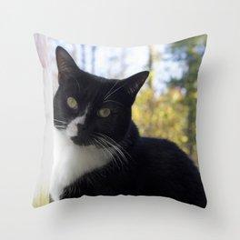 Tuxedo stare Throw Pillow