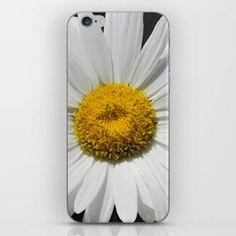 Contemporary White Daisy on Grey Pop Of Yellow Art A490 iPhone Skin