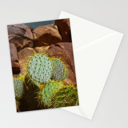Cactus in the Southwest Stationery Cards