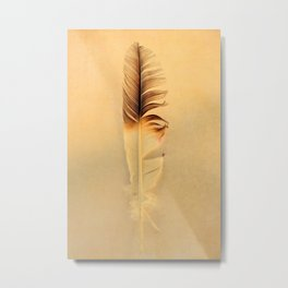 FEATHER PHOTOGRAPHY, FEATHER NATURE PHOTO WALL ART, BIRD FEATHER PRINT Metal Print