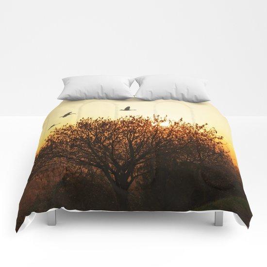 Morning mood Comforters