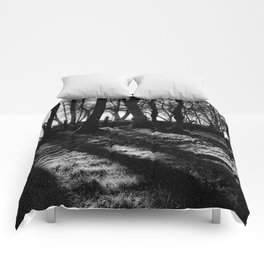 If You Go Down to the Woods Today... Comforters