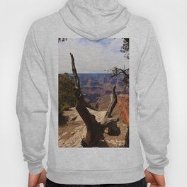 Grand Canyon View Through Dead Tree Hoody