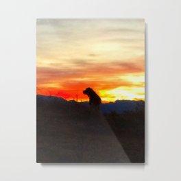 Black Dog Red Metal Print
