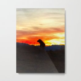 Black Dog Red Metal Print