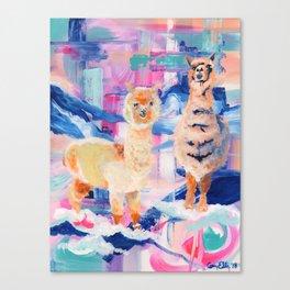Puffy Dreams (alpaca and llama) Canvas Print