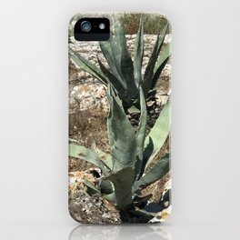A capri plant iPhone Case