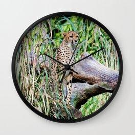 Cheetah Pose Wall Clock