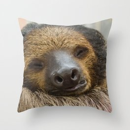 Sloth_005_by_JAMFoto Throw Pillow