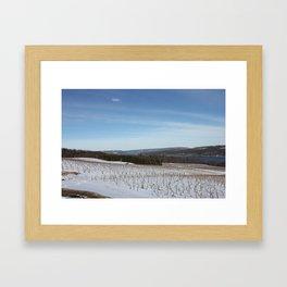 Evergreen Lek Vineyard Framed Art Print