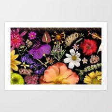 Radiant Symphony Art Print