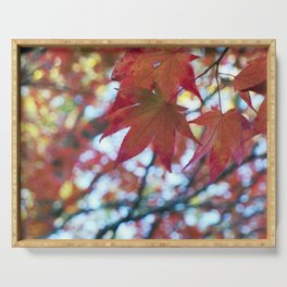 red maple leaves and bokeh Serving Tray